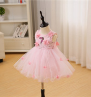 Maggie, new born baby, pink girl, baby, one year old, 100 days wedding dress, princess, fluffy dress