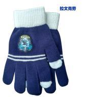 Harry Potter glove