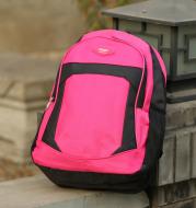 Manufacturers wholesale custom logo girls double shoulder bag boy backpack boy advertising printed school schoolbag custom made