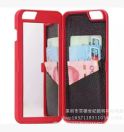 Case with mirror