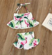 Flamingo 2pc Swimsuit