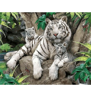 diy White Tiger paintings by numbers with acrylic paints