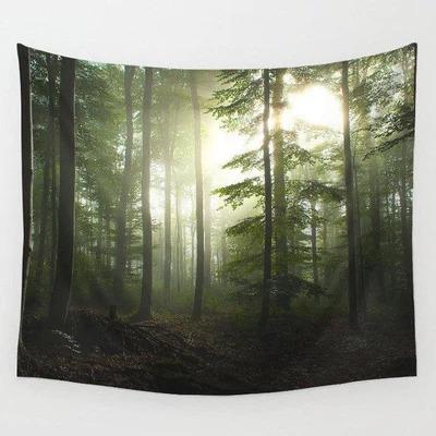 Wandkleed kopen met bomen - Schimmige ochtend natuur - Met zonlicht - Beschikbaar in 2 maten nu te koop in onze webshop