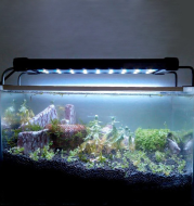 36 / 72 aquarium led lighting lamp of freshwater fish aquarium led light fish aquarium pet supplies
