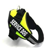 Dog chest strap