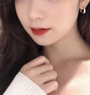 Niche earrings