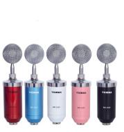 Direct manufacturers   condenser mic Anne condenser