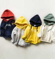 Boys thick hooded sweatshirt