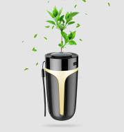 Multifunctional air purifier
