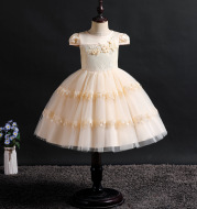 Baby Girls Party Dress 2020 Elegant Girl Evening Dress
