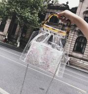 Transparent Summer Bag
