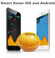 Wireless Sonar Fish Finder